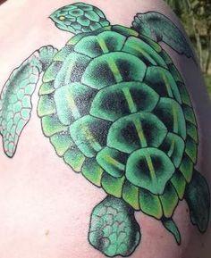 tattoos turtle on pinterest turtle tattoos sea turtle tattoos and tribal turtle tattoos. Black Bedroom Furniture Sets. Home Design Ideas