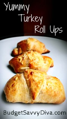 These are addicting. Turkey, cheese, and mustard spread in a crescent roll -- how could you go wrong ?!