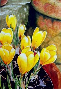 CrocusSpring watercolor