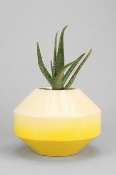 Plum & Bow Medium Fade Out Vase
