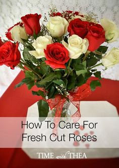 How To Care For Fres