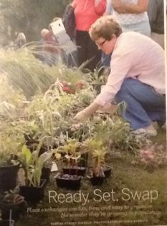 Host a plant swap. I so want to do this. From Martha Stewart living mag not a link.