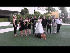 Jethro the ring bearer stole the show at this wedding (out takes) Wedding crasher Level: Dog