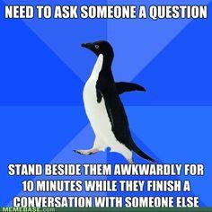 Socially awkward penguin. Ugh hate thiiiisssss