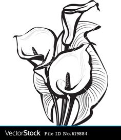 I like the linework for this calla lily. It could work...