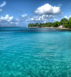✮ Barbados Beach. LOVE the clear, blue water! So beautiful!