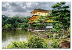 2000 templo, 2000pc jigsaw, puzzl educa, del pabellón, templo del, kyoto, golden pavillion, pabellón dorado, jigsaw puzzles