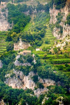 The Amalfi coast mountain vineyards around Nocelle, Postiano, Italy ~ UNESCO World Heritage Site. Photo: Paul Williams