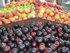 tabela sobre congelamento de frutas.