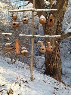 gourds birdhouse, dri gourd, winter garden, dried gourds, gourd birdhous, bird hous
