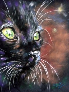 Pastel Paintings by Paul Knight. Cats ~ words fail, just exquisite! ...black cats