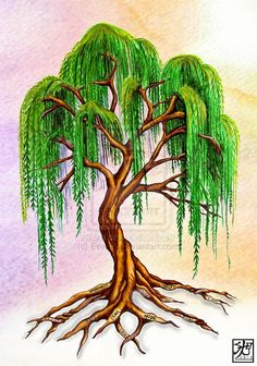 willow tree tattoo   Weeping Willow with virtue roots by ~EverIris on deviantART