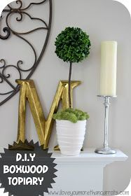 I Love You More Than Carrots: D.I.Y Boxwood Topiary :: Take That, Pottery Barn and Ballard Designs!