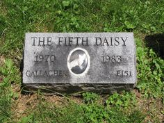 Our furry family members - Hartsdale Cemetery