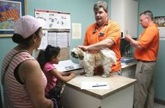 Record number of dogs and cats helped at Humane Society