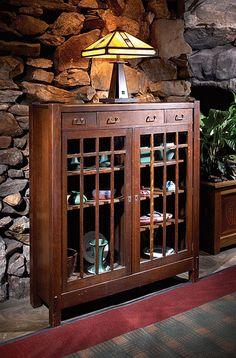 furniture, book case or curio cabinet