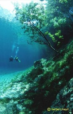 Imagine scuba-diving through this park in the summer! Cool park in Austria that is submerged in summer and dry in winter.