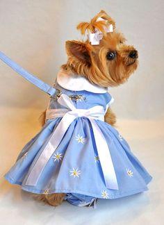 Springtime Denim Daisy Dog Dress