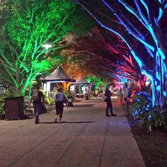 Cairns Esplanade by night is a magical experience! www.pacifichotelcairns.com #cairns #cairnsaccommodation regram by