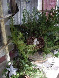 The Creative Gardener~ my front porch