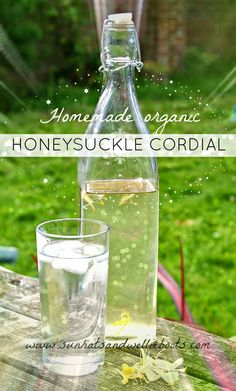 Homemade Honeysuckle Cordial - made with flowers from the garden