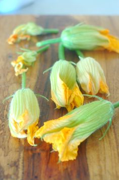 Fried squash blossoms with homemade ricotta | The Elliott Homestead