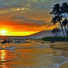 Beach sunset in hawaii