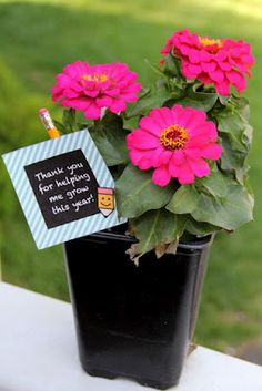 Shower of Roses: End of School Year Teacher Appreciation Gifts
