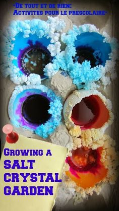 Growing a salt crystal garden. Beautiful and fun. You can make it grows endlessly!