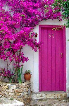 Bougainvilleas at the door in Alonissos, Greece.