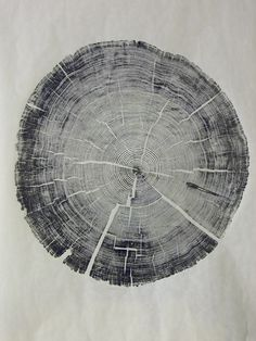 line drawings, tree stumps, tree trunks, art, bryan nash, fingerprint tree, prints, wood grain, nash gill