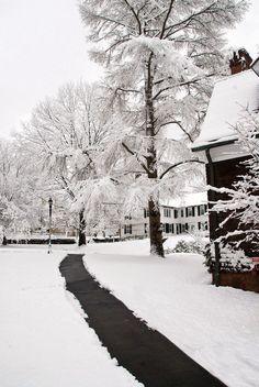 Winter in Farmington
