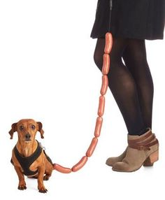 A hot dog leash for hot dogs. Finally!