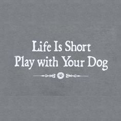 anim, life, dogs, pet, play, shorts, puppi, quot, friend