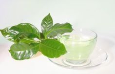 What are the health benefits of green tea extract?