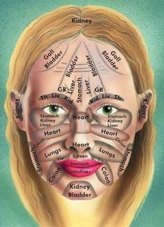 Chinese face map. According to Chinese medicine, where you break out has a lot to do with what is going on internally.