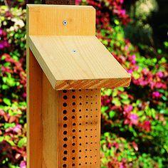 DIY Bee Box--mason bees