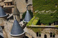 Olite castle Navarra Spain
