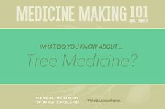 Most often, we appreciate trees for their beauty, shade on a hot summer's day, or for their tasty fruit during harvest time, but we often overlook their medicinal properties, which can be found in nearly every part of a tree. How much do you know about TREE MEDICINE? Test your knowledge in our new quiz! #thinkuknowherbs