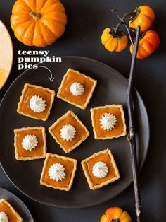 mini square pumpkin pies