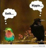 goth - hippie