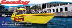 75 minute lakefront speedboat tour! For Sunday afternoon maybe