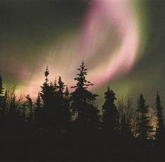 Newfoundland, Northern Lights