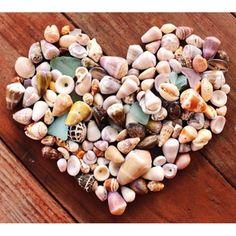 #seashell LOVE