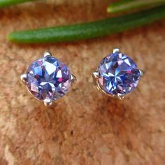 Tanzanite Earrings in 14k White Gold