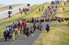 The cattle drive is the first event of Cheyenne Frontier Days, and folks line the roads to watch.