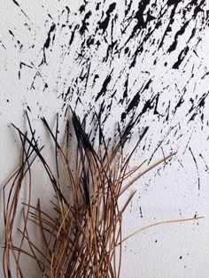 Dried Grass Drawing