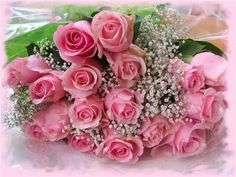 pink roses, mai interessant, galleri, rosa, birthday greetings, bouquets, world maps, flore mai, flower