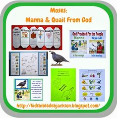 Bible Fun For Kids: Moses: Manna & Quail to Eat!