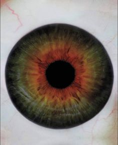 eye of björk by Warwick Saint